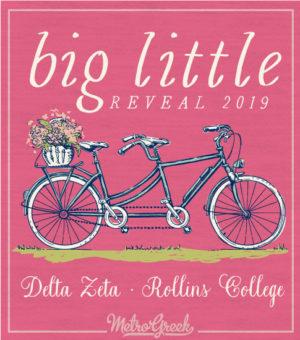 Delta Zeta Big Little Reveal T-shirt