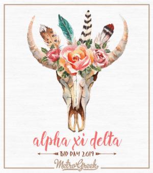 Alpha Xi Delta Bid Day Shirt Desert Skull