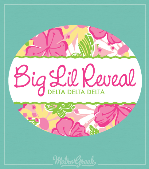 Tri Delta Big Little Reveal Shirt