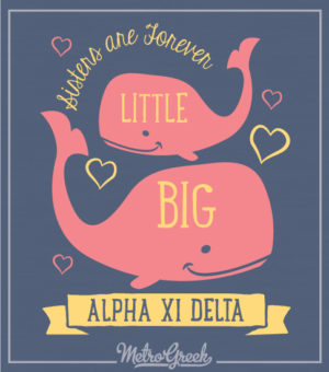 Big Little Reveal Shirt With Whales